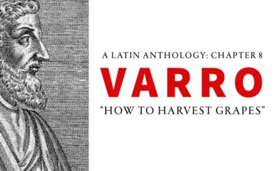 Chapter 8 – Varro: How To Harvest Grapes