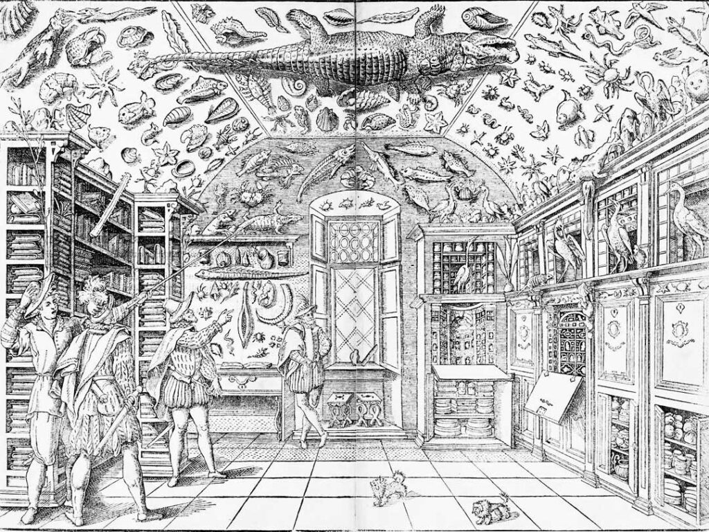 Engraving of a Renaissance Cabinet of Curiosities from 1599.